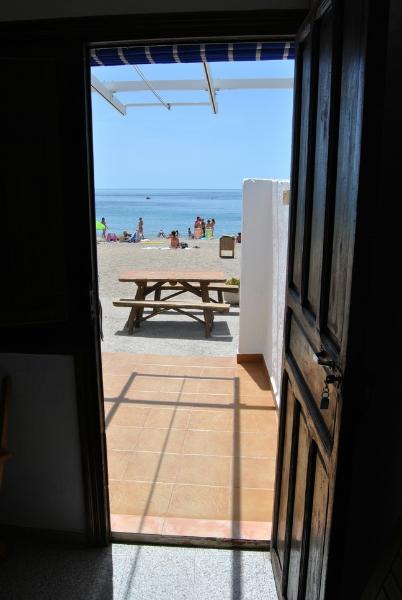web_terraza
